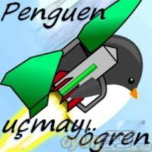 Penguen uçmayı öğren